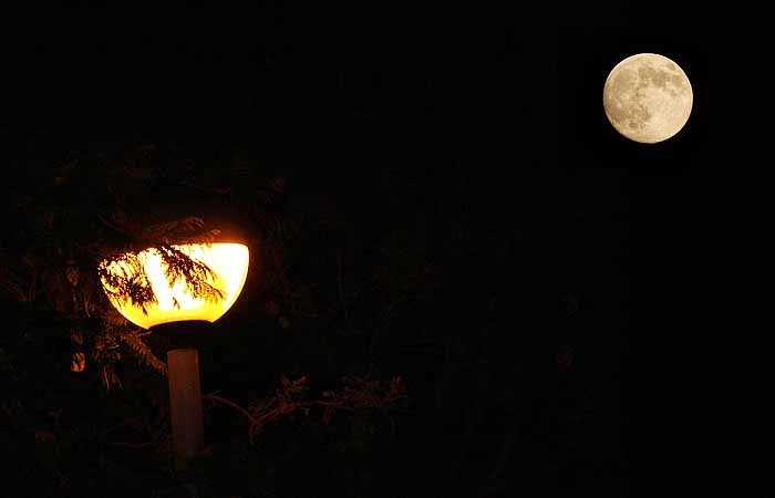 Image result for moon and street light images